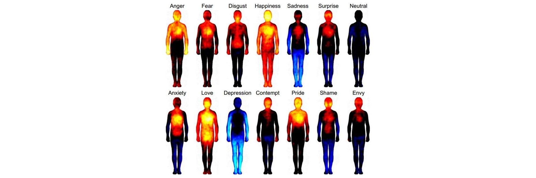 The Three Schools of Thought Governing Emotion in Technology