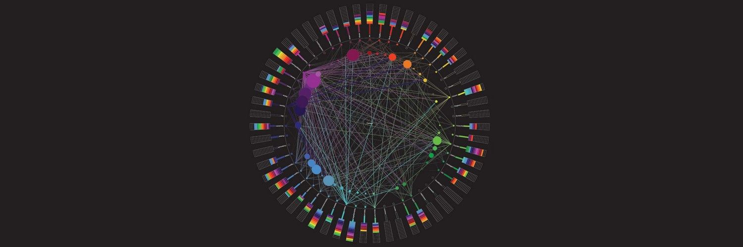The Principles of Information Visualization for Basic Network Data